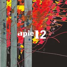 APIE 12
