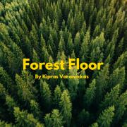 FOREST FLOOR (Singlas)