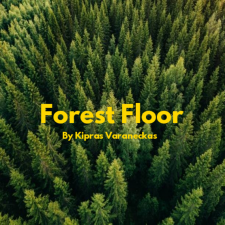FOREST FLOOR (Singlas)