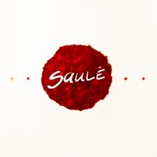 SAULĖ (Singlas)