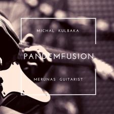 Pandemfusion