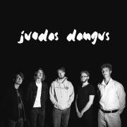 JUODAS DANGUS (Singlas)