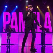 PAMELA (Singlas)
