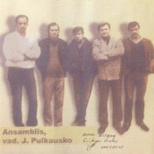 Ansamblis, Vad. J. Pulkausko