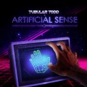 Artificial Sense