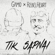 TIK SAPNAI (REMIX)