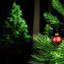 Su Šv.Kalėdom sveikinu tave