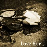Love Hurst (Singlas)