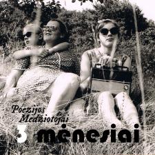 3 Mėnesiai (Demo)